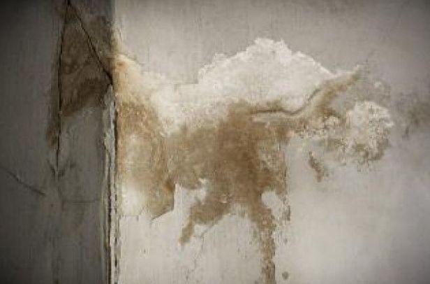 Imagen de una pared con humedades